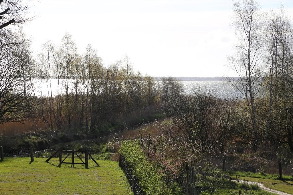Freier Blick über den Bodden bis hinüber zum Festland